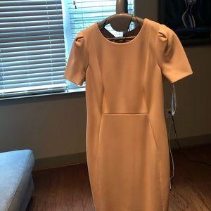 Peach office Calvin Klein Dress